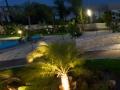 garden-panorama-2